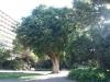 PIC_20030427161419.jpg